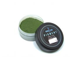 MODELLERS WORLD MWP022 Pigment - Dark algae